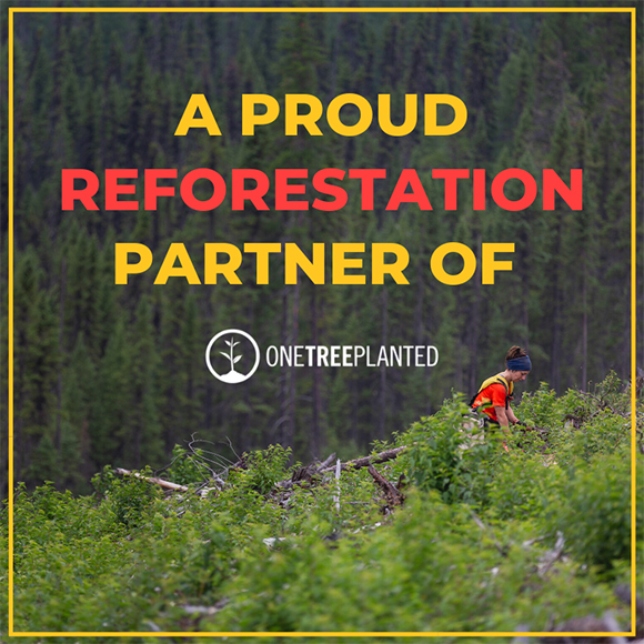 Reforestation partner of one tree planted | Great White